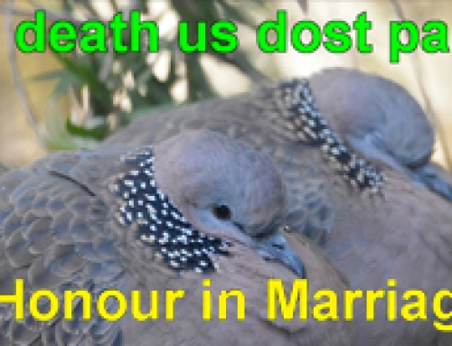 Sermon on the mount – Honour in Marriage